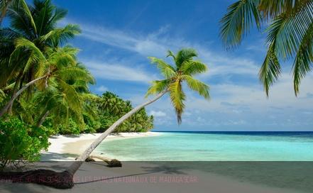 Voyage à Madagascar : choisissez un tourisme au naturel